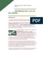 ESTUDIOS DE PREINVERSIÓN EN AGROINDUSTRIAS Y COMERCIALIZACIÓN