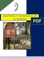 Ensayo Anatomia y Tecnoligia de La Madera