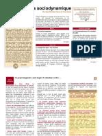 Lettre Sociodynamique 20 - Strategie Des Allies