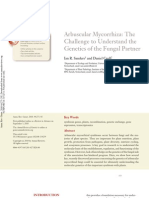 Arbuscular Mycorrhiza Genetics of the Fungal Partner