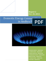 Domestic Energy on in Andhra Pradesh - Report 2