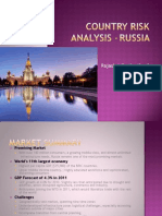 Country Risk Analysis -Russia_nopics
