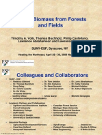 Woody Biomass From Forests and Fields