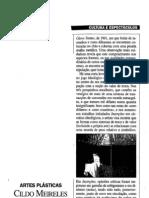 Cildo Meireles, Por. Visao, 23 .05.1996