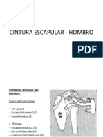 Tema 4 .Cintura Escapular - Hombro 1112