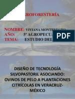 AGROFORESTERÍA ESTUDIO DEL CASO