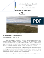 Site Guide to Budle Bay
