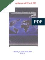Guia de Análise - MSA - Rev 01