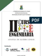 Apostila de Algebra Linear (1)