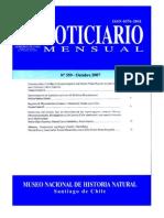 Cachalotes Fosiles de Chile JC