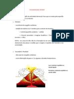 VULCANOLOGIA - resumos