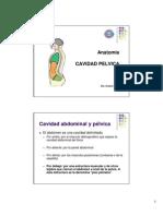 Clases 8 Pelvis y Genital