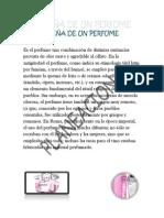 Planeacion Del Perfume