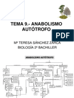TEMA_9_ANABOLISMO_AUTOTROFO