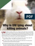 UW Rabbit Ad the Daily