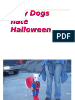 Why Dogs Hate Halloween