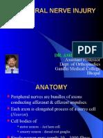 Peripheral Nerve Injury1
