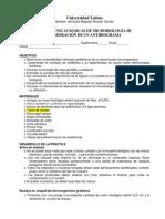 Práctica No 8 antibiograma