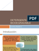 Detergente Biodegradable