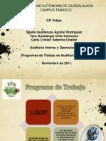 Expo Programas de Auditoria