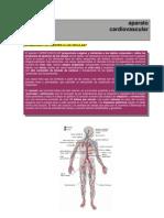V. Cardiovascular