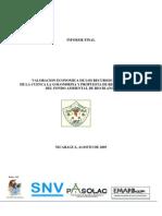 Estudio de Servicios Ambient Ales Hídricos de Rio Blanco - Informe Final