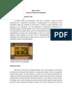 Estructura Interna Del or