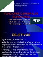 Funciones Cerebra Les Superiores Aor2008