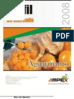 perfil-aguaymanto - elaborado por AMPEX