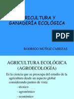 Agricultura y Ganader%Cda Ecol%d3gica.presentaci%f3n