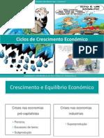 Crescimento Economico e Ciclos cos