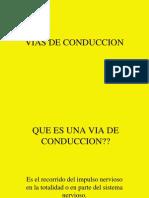 VIAS_DE_CONDUCCION