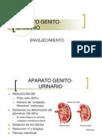 APARATO GENITO-URINARIOx