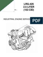 194-303 LRG425