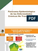 ZitPanorama Epidemiologico