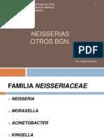Neisserias y Otros BGN