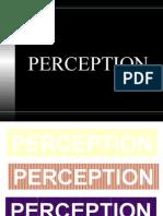 Perception Sem1