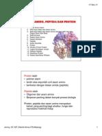 Asam Amino, Peptida Dan Protein