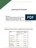 Organizacaogenoma