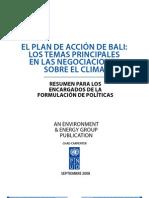 Plan de Bali -Cambio Climatico