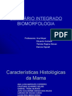Histologiadamama Final