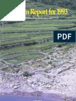 Program Report for 1993
