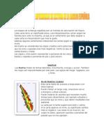 MANUAL BASICO DE APRENDIZAJE DE LECTURA DE LA BARAJA ESPAÑOLA
