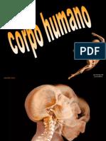 CORPO HUMANO (Apresentação a