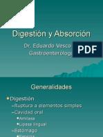 8Digestión y Absorción