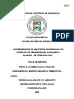 Tesis Para Felipe Desde El Ecuador