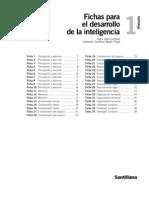 DESARROLLO DE LA INTELIGENICA. PRIMERO DE PRIMARIA