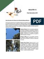 Boletín 13 de correo real de las mariposas monarca. Temporada 2011 a 2012