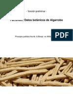 Algarrobo Factsheet Preliminar 14-11-2011