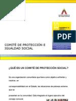 Comite de Protección e Igualdad Social